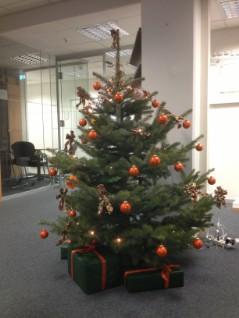 Weihnachtsbaum Service.Weihnachtsbaum Service Flemnitz